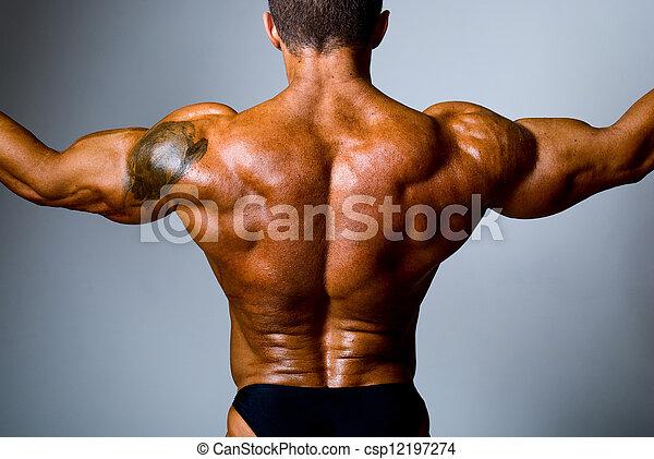 Epaule Tatouage Elle Dos Musculaire Homme Tatouage Elle Dos