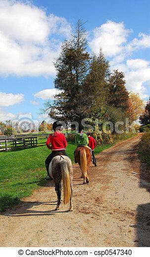 équitation - csp0547340