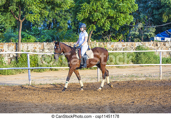 équitation, cheval, femme, parcour, elle - csp11451178