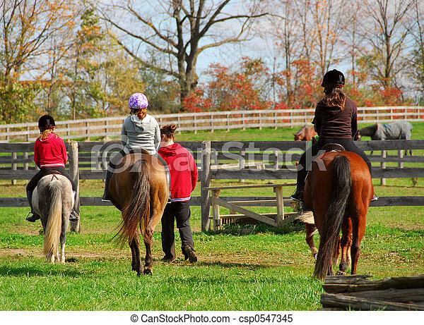 équitation - csp0547345