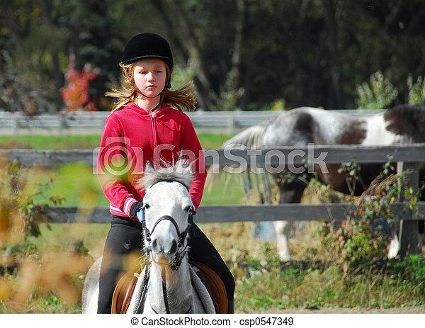 équitation - csp0547349