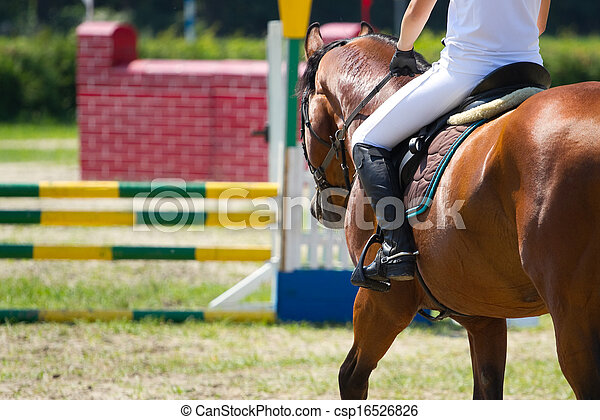 équitation, sport - csp16526826
