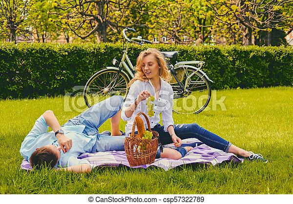 été, couple, park., pique-nique - csp57322789