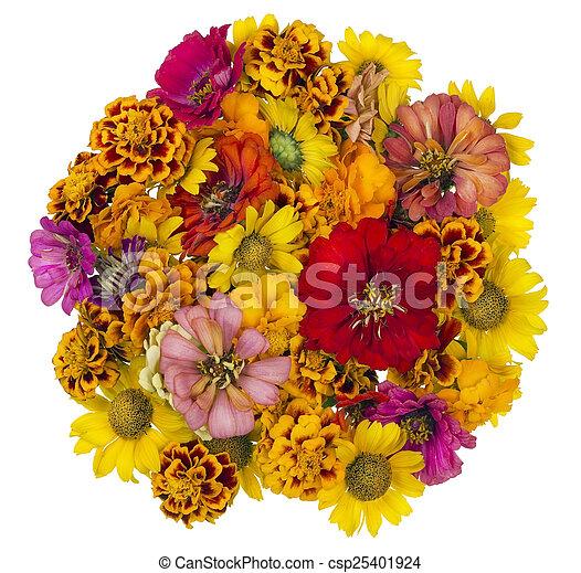 été, fleurs, balle - csp25401924