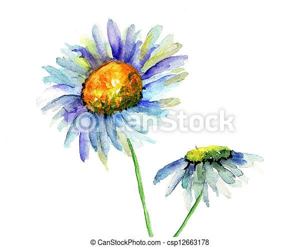 été, fleurs - csp12663178
