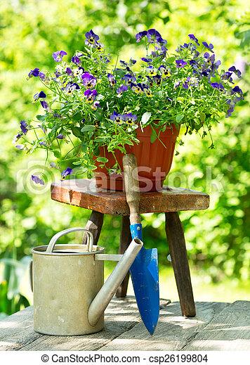 été, fleurs, outils, jardin - csp26199804