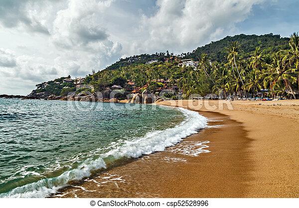 Parfait été, Koh, Nature, Thailand., Mer, Plage, Paysage, Samui