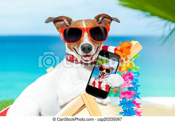 été, selfie, chien - csp20335097