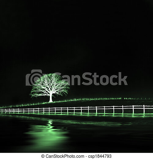 éthéré, chêne, paysage, arbre - csp1844793
