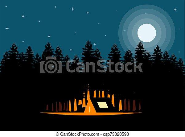 étoiles, lune, nuit - csp73320593