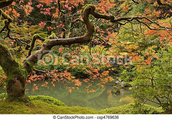 évad, bukás, 2, kert japanese - csp4769636