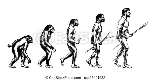 évolution, humain, illustration - csp28401932