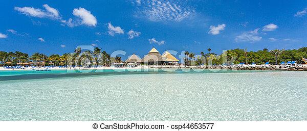 île, aruba, flamant rose, plage - csp44653577