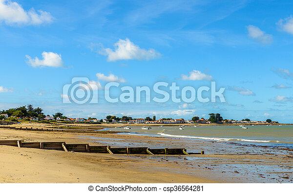 noirmoutier paysage