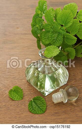 óleo, madeira, menta, aroma, fundo, fresco, hortelã, essencial - csp15176192
