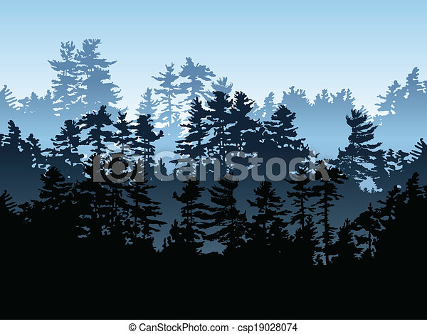örökzöld, erdő - csp19028074