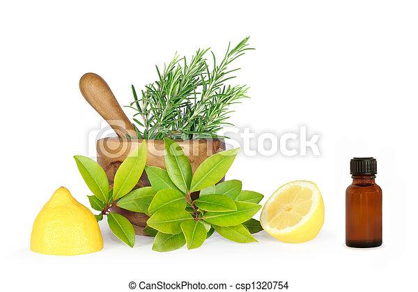 örtar, blad, rosmarin, vik - csp1320754