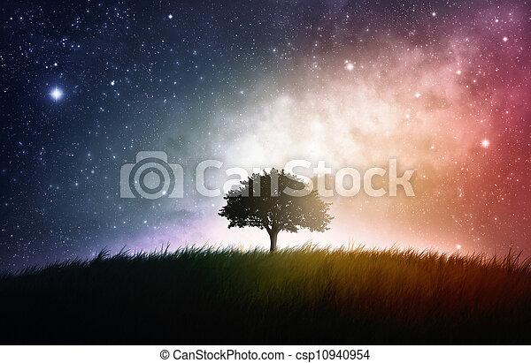 único, árvore, fundo, espaço - csp10940954