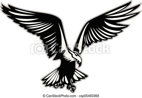 łup Wektor Lot Ptak Ilustracja Szpony Ptak Wielki