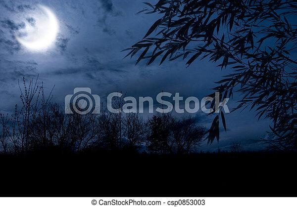 ősz, éjszaka - csp0853003