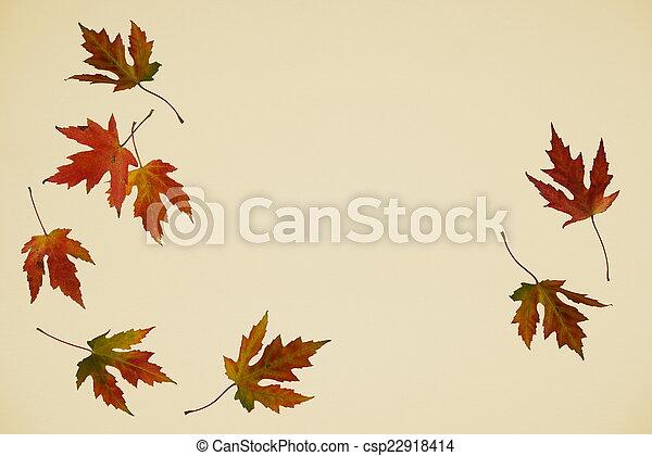 ősz, esik búcsú - csp22918414