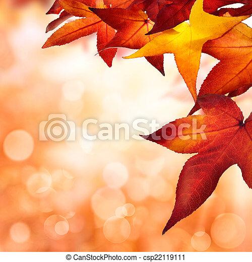 ősz kilépő, bordered, háttér - csp22119111
