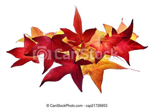 ősz kilépő, egyezség - csp21726653