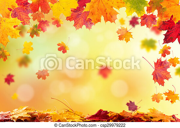 ősz kilépő, háttér - csp29979222
