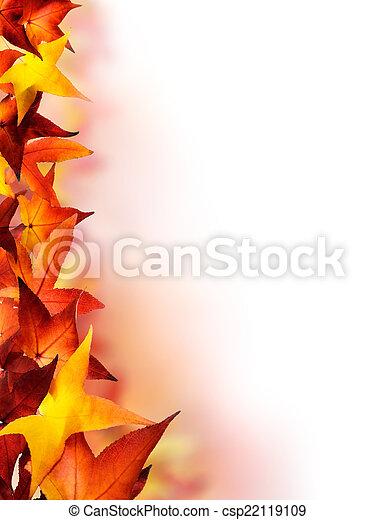 ősz kilépő, határ - csp22119109