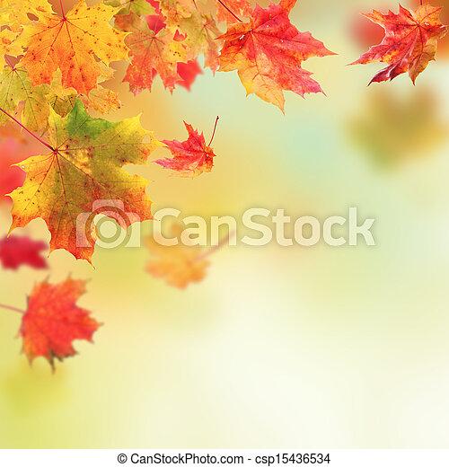 ősz kilépő - csp15436534