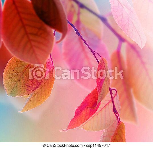 ősz kilépő, tervezés - csp11497047