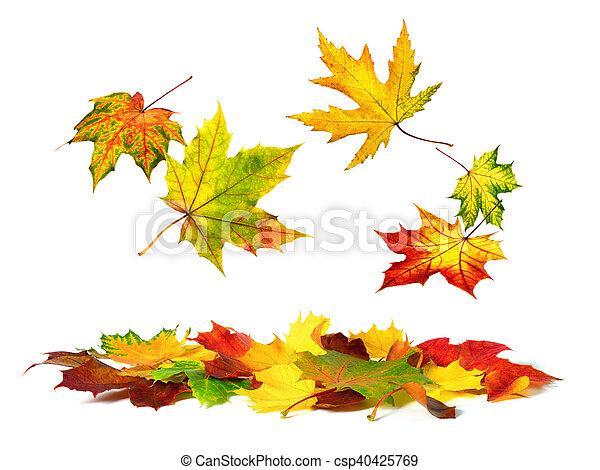 ősz, lefelé, zöld, esés, színes - csp40425769