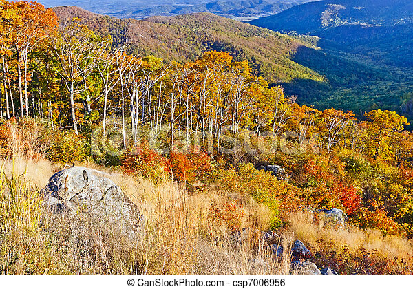 ősz, nemzeti park, shenandoah - csp7006956