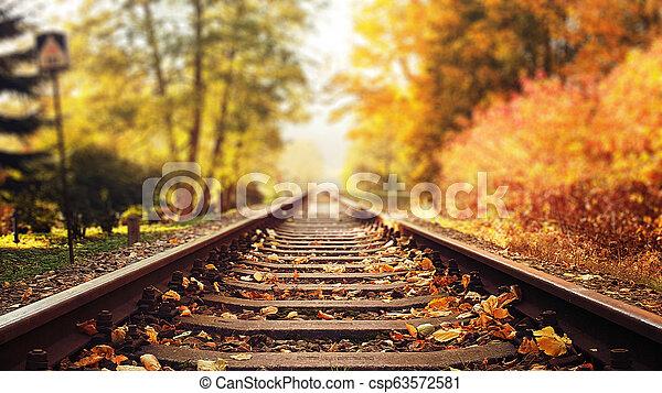ősz, színes, zöld, lefelé, sín, esés, vasút - csp63572581