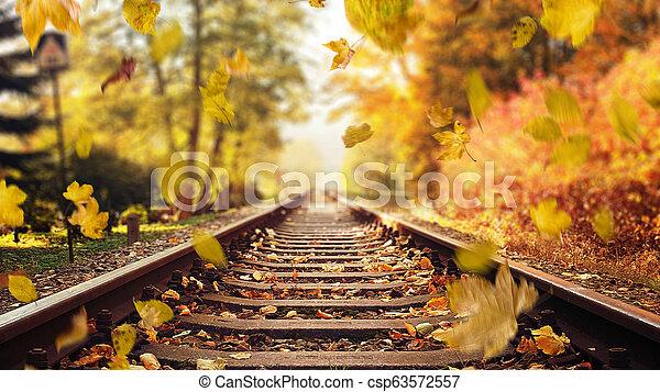 ősz, színes, zöld, lefelé, sín, esés, vasút - csp63572557