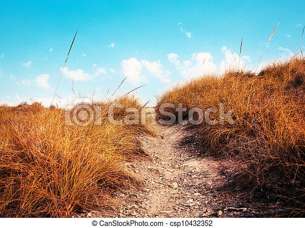ścieżka, niebo - csp10432352