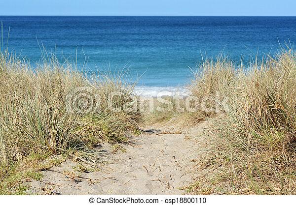 ścieżka, plaża - csp18800110