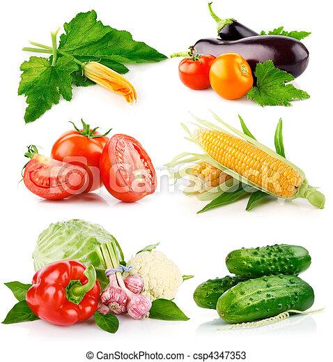 świeża zielenina, komplet, zielone listowie - csp4347353