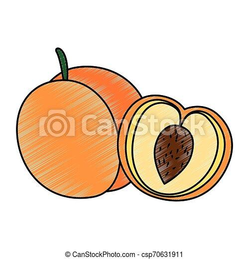 świeży, mangowiec, owoc, ikona - csp70631911