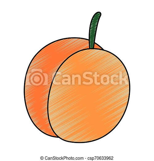 świeży, mangowiec, owoc, ikona - csp70633962