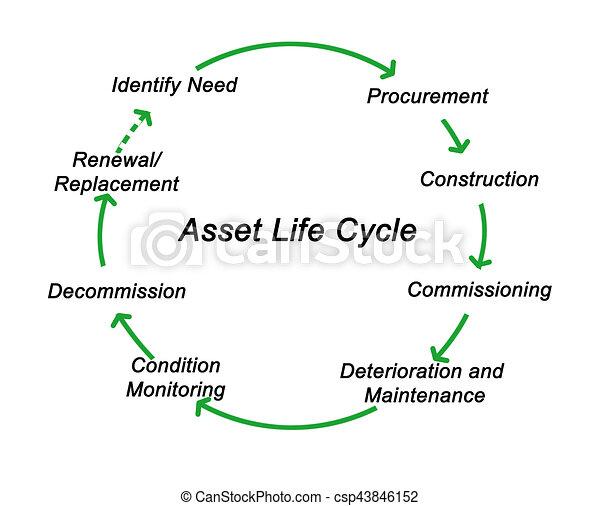 życie, cenny nabytek, cykl - csp43846152