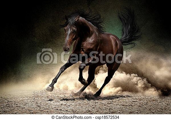 άλογο , εγκαταλείπω , καλπάζω  - csp18572534