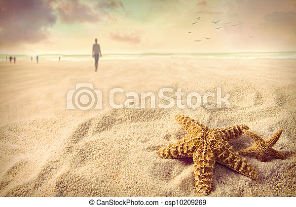 άμμος ακρογιαλιά , αστερίας  - csp10209269