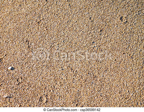 άμμοs  - csp36599142