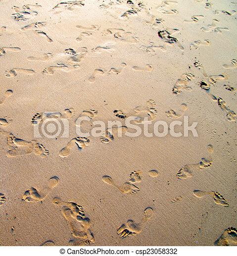 άμμοs  - csp23058332