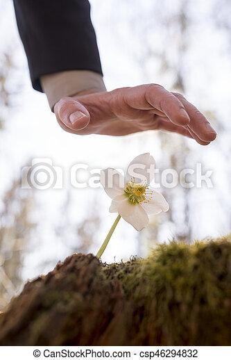 άντραs , πάνω , λουλούδι , αμπάρι ανάμιξη  - csp46294832
