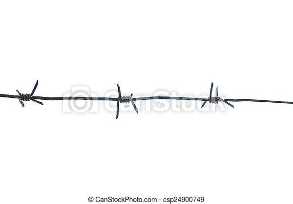 αγκαθωτό συρματόπλεγμα  - csp24900749