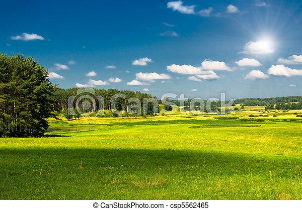 αγροτικός γραφική εξοχική έκταση  - csp5562465