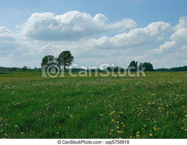 αγροτικός γραφική εξοχική έκταση  - csp5756918