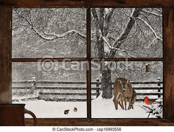 αντίκρυσμα του θηράματοσ. , χειμώναs , πρωί  - csp16993556